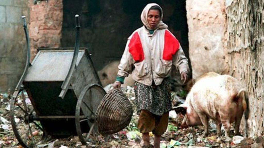 Image result for dalit