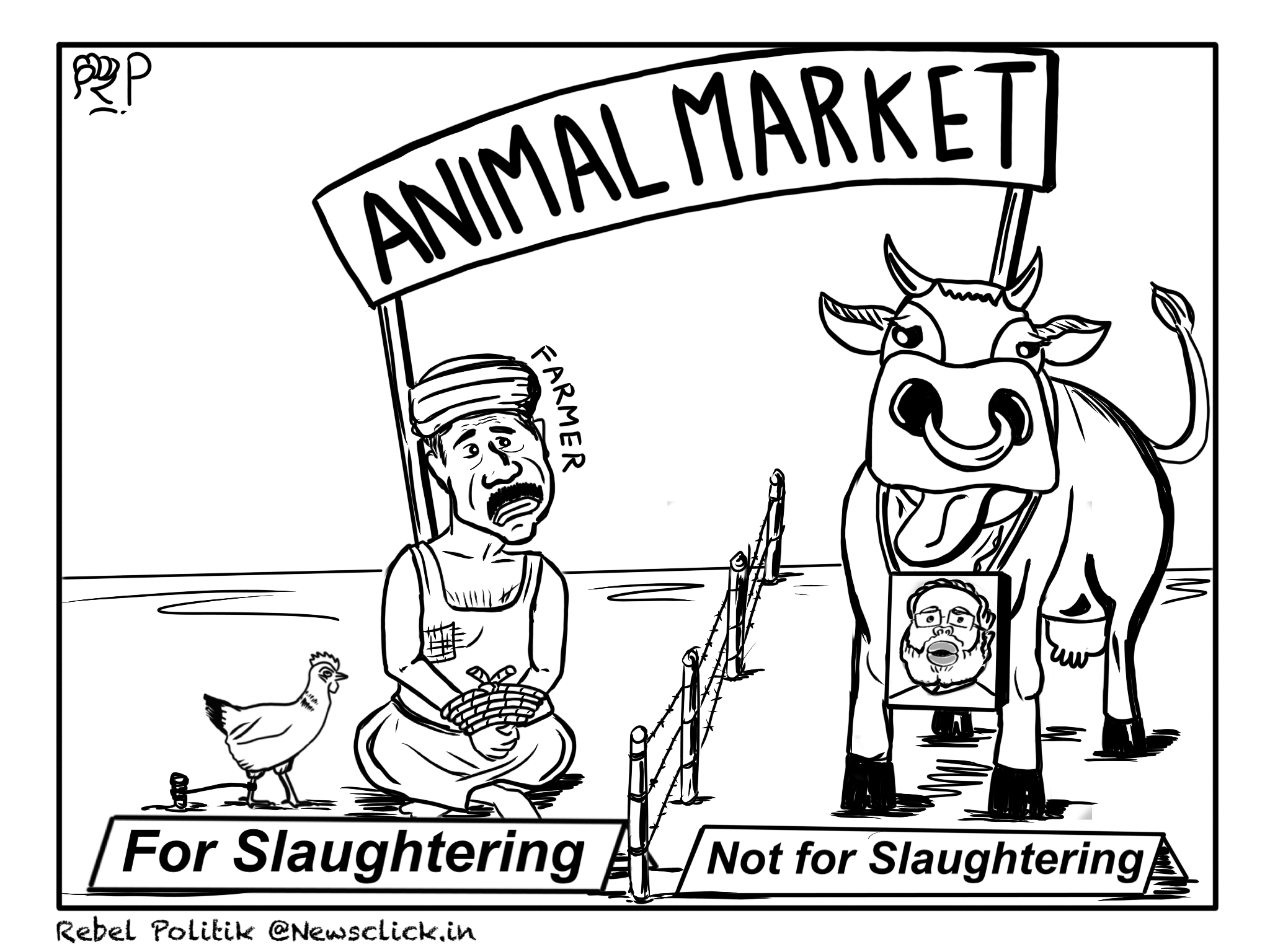 cattle slaughter ban will deepen the farmers� distress