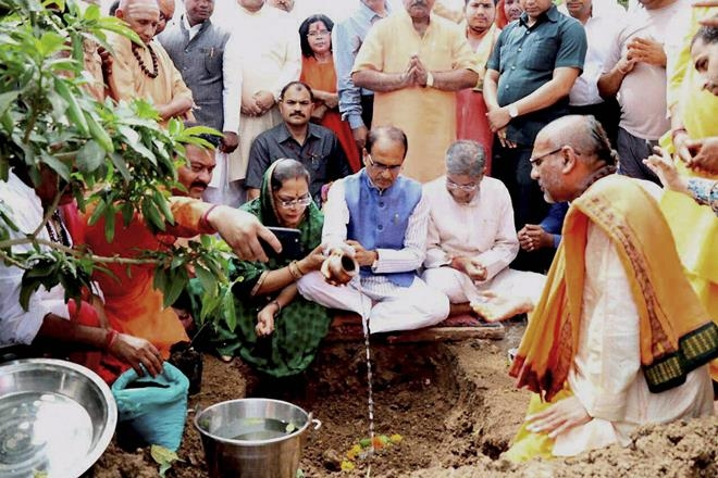 Narmada Plantation Scam