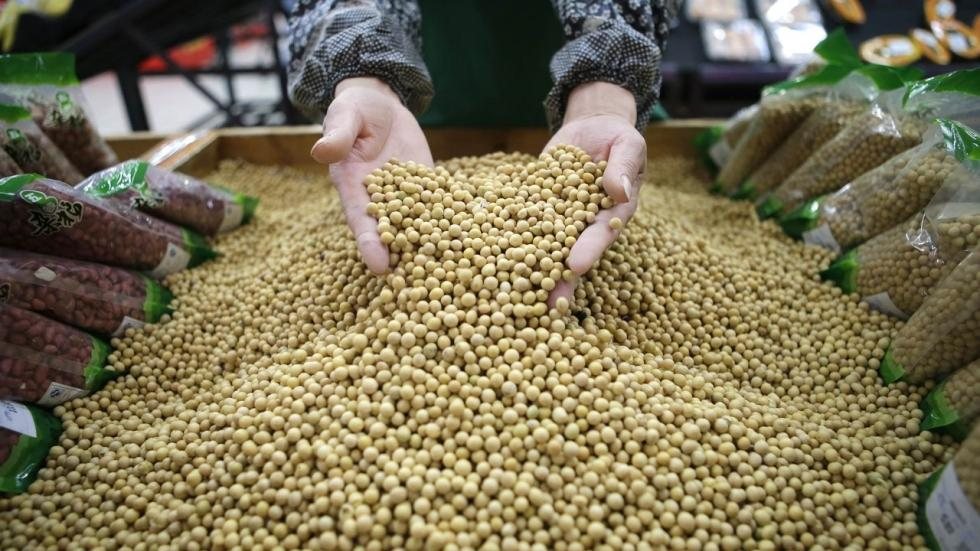 GM Seed Use has Surged in India, But With No Better Results