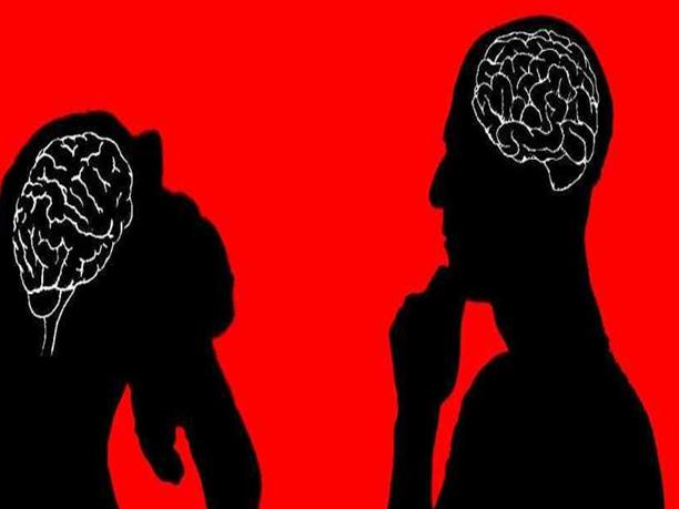Mammalian Brain All Newsclick