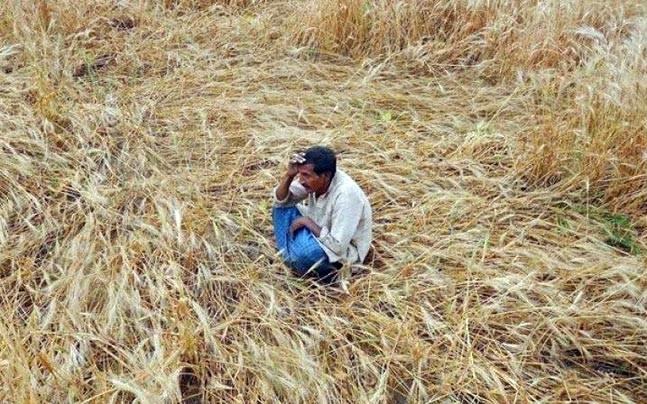 PM's Insurance Scheme For Farmers