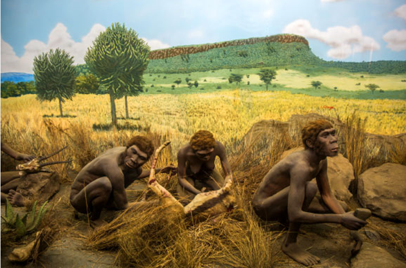 Early Human Species That Lived in the Luzon Island of the Philippines Discovered