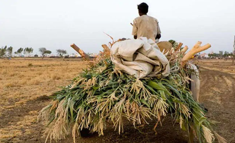 Elections 2019: With Farm Loan Waiver