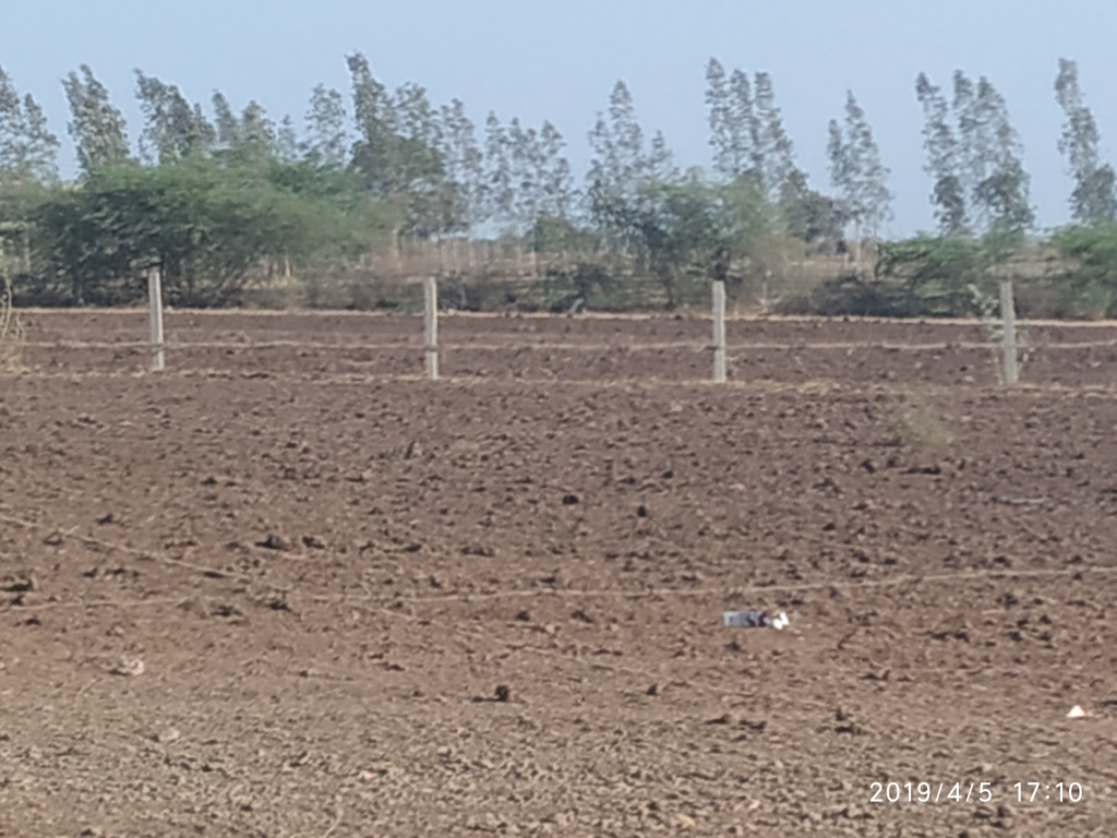 Drought in Gujarat