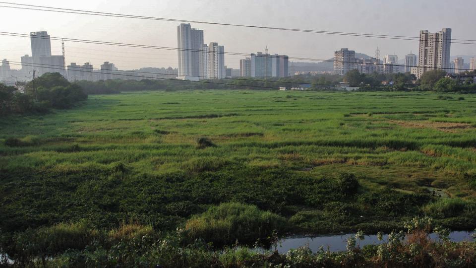 land grab mumbai by big corporate