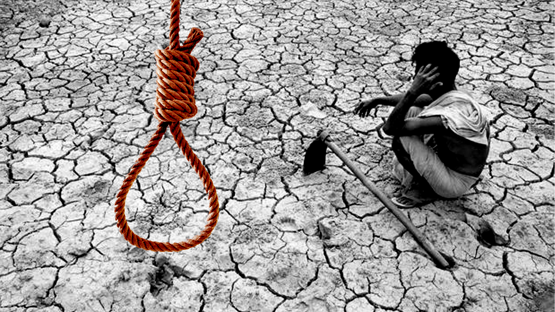 Over 800 Farmers Committed Suicide in Maharashtra This Year, Says Report