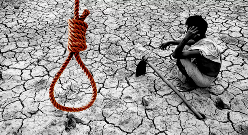 12,021 Farmers Committed Suicide Under the BJP Regime in Maharashtra