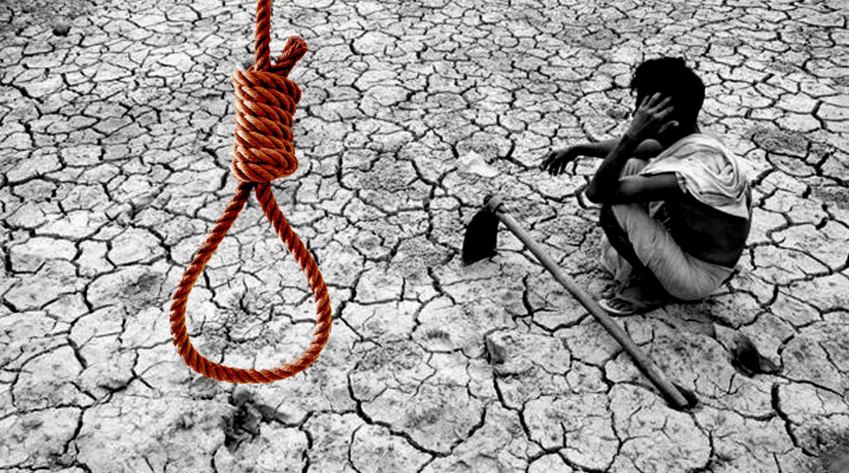 Another Farmer Commits Suicide in Rajasthan