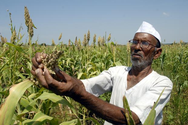 Crop Loans in Maharashtra: Standoff Between Govt and Banks Affects Farmers?