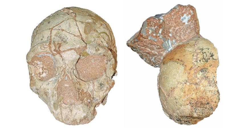 How Old Could Homo Sapiens be Outside of Africa?