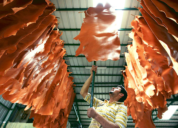 Adityanath Orders To Restart Kanpur Leather Industry, Tannery Owners Skeptical