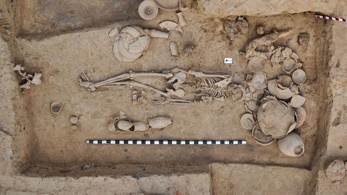 Rakhigarhi Skeleton Dna Indus Valley People Not Rig Vedic