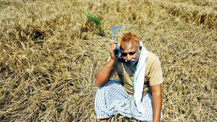 Karnataka Flood Relief Funds: Farmers Suffer Due to Lack of Crop Loss Compensation
