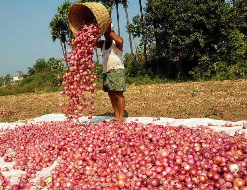 Households Feel the Pinch as Onion, Vegetable Prices Soar in Bihar