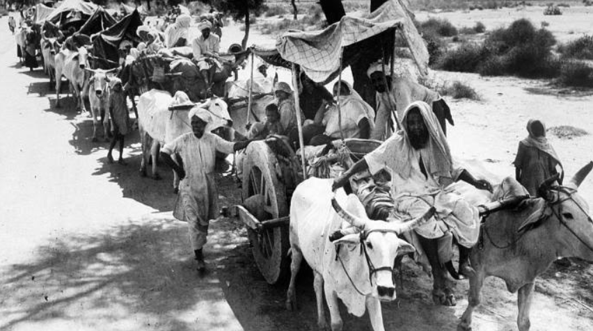 """The NRC-CAB is the RSS"