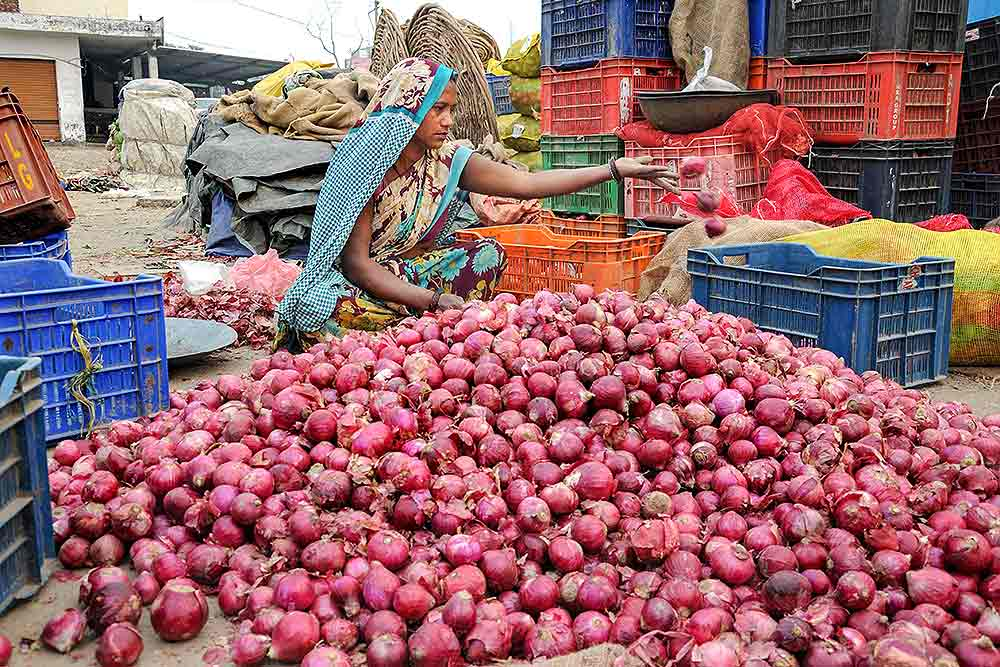 Roadside Vendors to Meat Sellers, Soaring Onion Prices Hit Business in Bihar