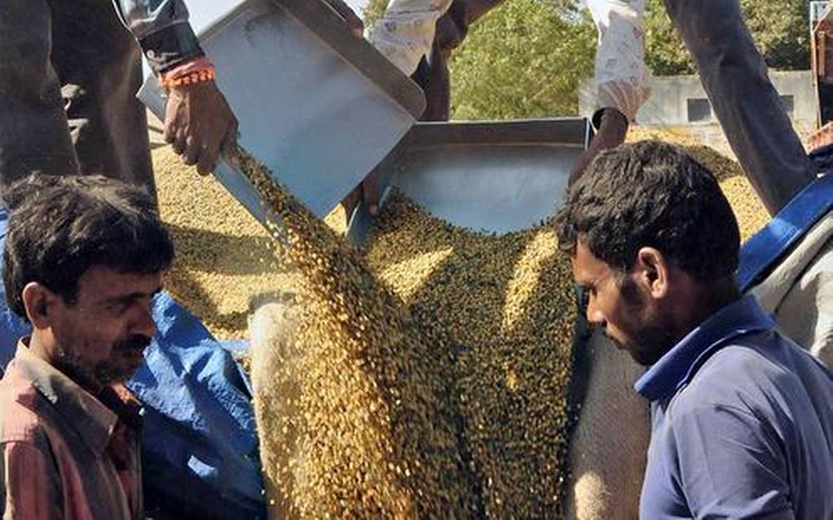 Centre's Stoppage of Foodgrain Supply to Hostels Hits Over 2 Lakh Students in Maharashtra
