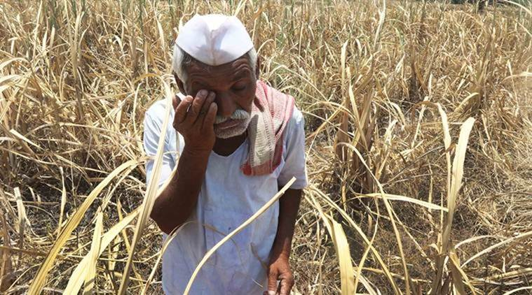 Farm Loan Waiver: Debt-free Farmers