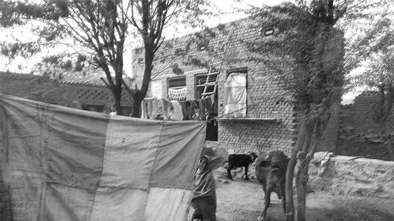 Children and Cattle Will Die of Starvation, Say Landless Agri Labourers in Haryana's Nuh