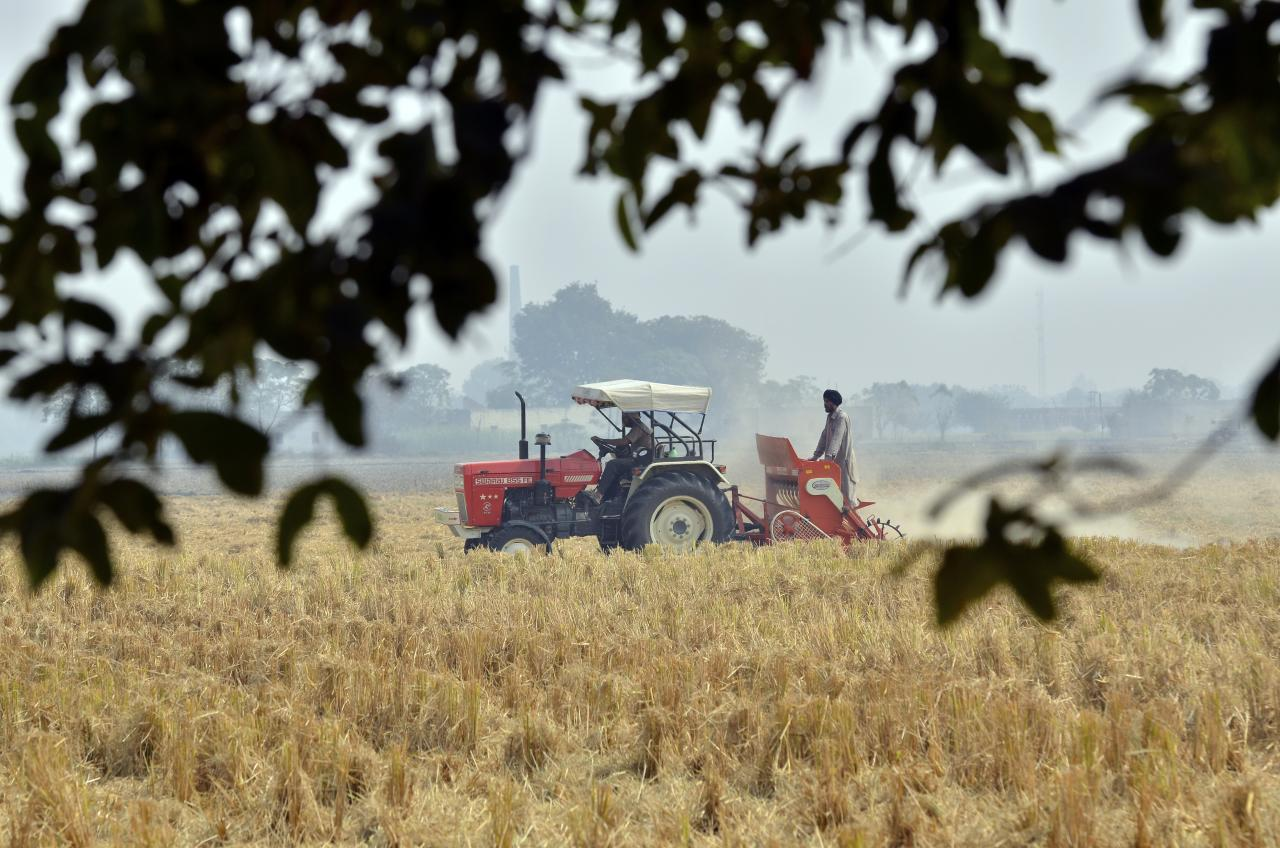 COVID-19 in Rural India-XXXVIII: Haryana Farmers Under Distress Due to Labour Shortage and Delay in Harvesting