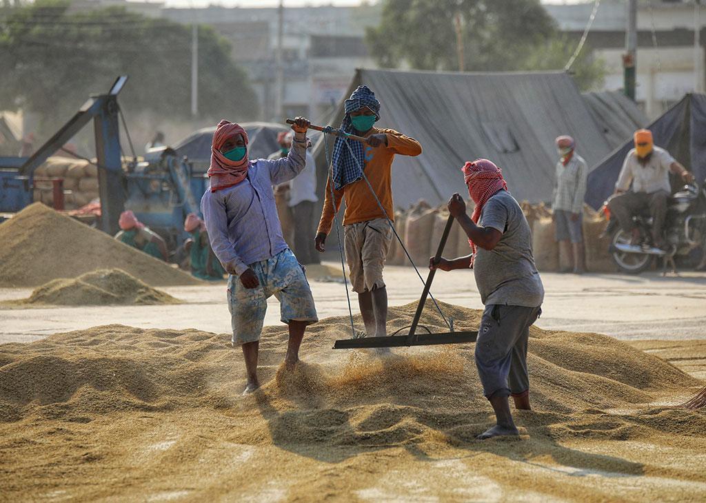 We Aren't Middlemen, Govt Using Farm Laws to Erase Us': Punjab's Arthiyas |  NewsClick
