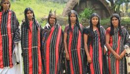 Tamil Nadu: Nilgiri Tribes Relocated Without Proper Compensation
