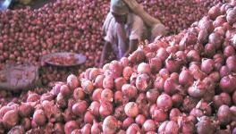 Onion Prices Shoot up Again