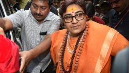 Pragya Thakur to be Dropped From Defence Consultative Panel: Nadda