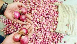 Onion Prices Spiked by 253% in Five Months