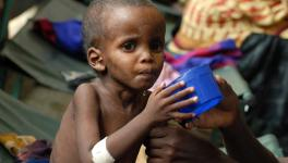 India malnutrition