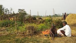 Bihar's Tribals Face Disenfranchisement