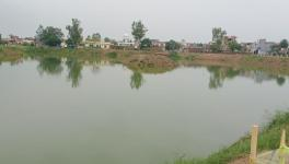 Traditional ponds in Punjab