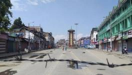 Article 370's Abrogation, Local Government