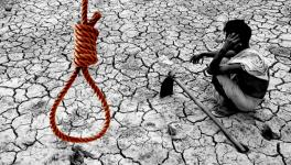 Farmer Suicides in Tamil Nadu