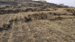 Gujarat: Land Rising Near Bhavnagar Mine; Villagers, Environmentalist Raise Alarm