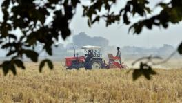Contract Farming in India