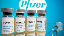 Vaccine Rollout Battle: First Past the Post May Win Major Market Share