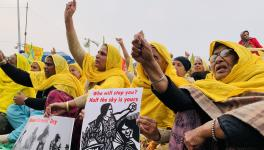 'Reclaiming Our Stake in Movement and Society,' Say Women Protesters Celebrating Mahila Kisan Diwas