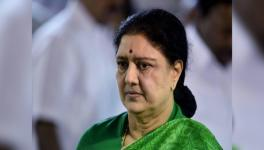 TN Elections: IT Raids on Opposition Candidates; OPS Supports Sasikala's Return to AIADMK