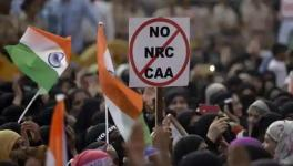 Madras HC quashes FIR against CAA protestor, upholds freedom of speech