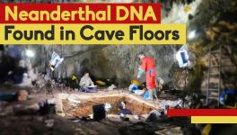 DNA from Cave Dirt Now Tells Us How Ancient Humans Lived