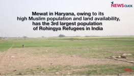 Rohingya Refugees in Mewat struggle to Survive