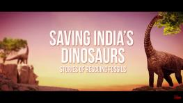 Saving India's Dinosaurs: Stories of Rescuing Fossils