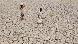 #MahaDrought: Farmers Commit Suicide, Families Struggle to Find Way out