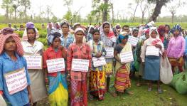Tea workers in Dibrugarh protest against BJP by hanging placards around their necks.