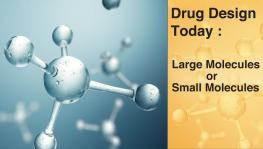 Drug Design Today: Large Molecules or Small Molecules?