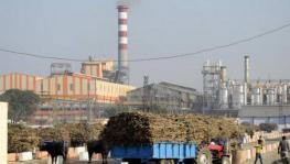 Elections 2019: No Hope for Revival of Sugar Mill Closed 21 Years Ago in Bihar