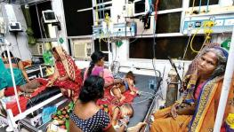 Most AES Victims in Bihar Are Dalits