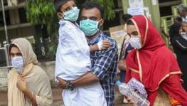 Nipah virus confirmed in Kerala